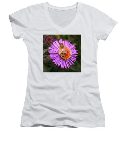 Women's V-Neck T-Shirt (Junior Cut) featuring the photograph The Aster And The Bee by Laurel Talabere