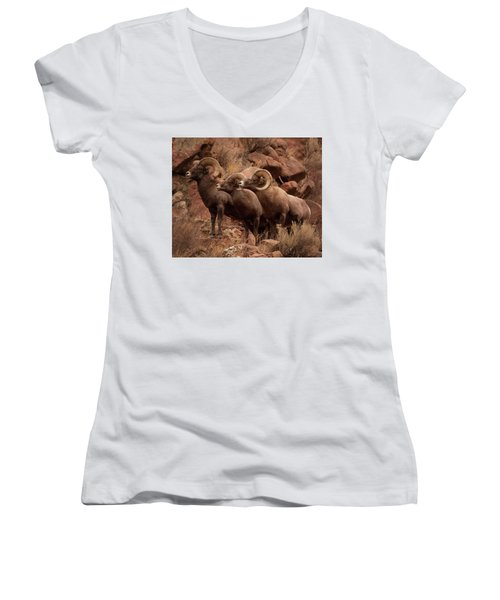 The Boys Women's V-Neck (Athletic Fit)