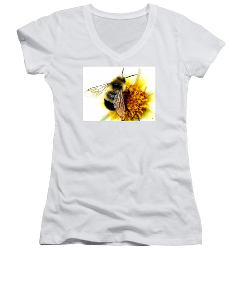 The Buzz Women's V-Neck
