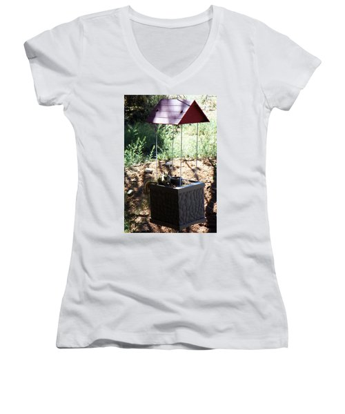 The Chipmunk And The Well Women's V-Neck T-Shirt (Junior Cut) by Joseph Frank Baraba
