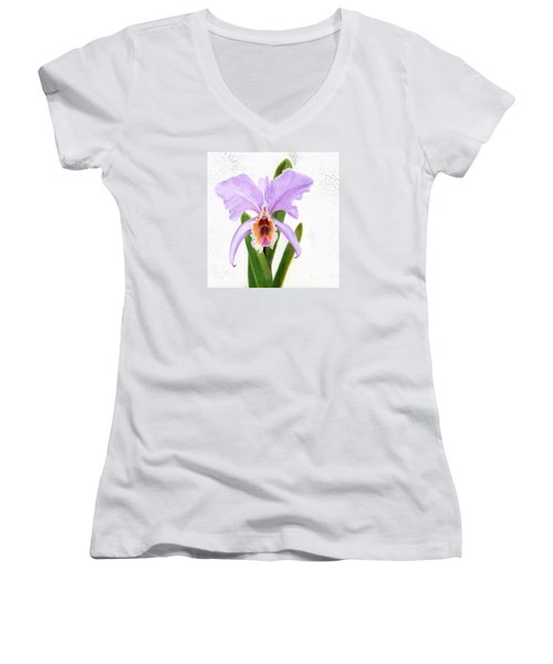 The Christmas Orchid Women's V-Neck (Athletic Fit)