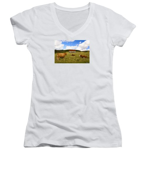 The Cows Of Mabou Women's V-Neck (Athletic Fit)