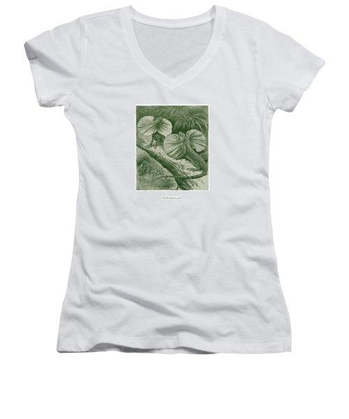 The Frilled Lizard Women's V-Neck T-Shirt (Junior Cut) by David Davies