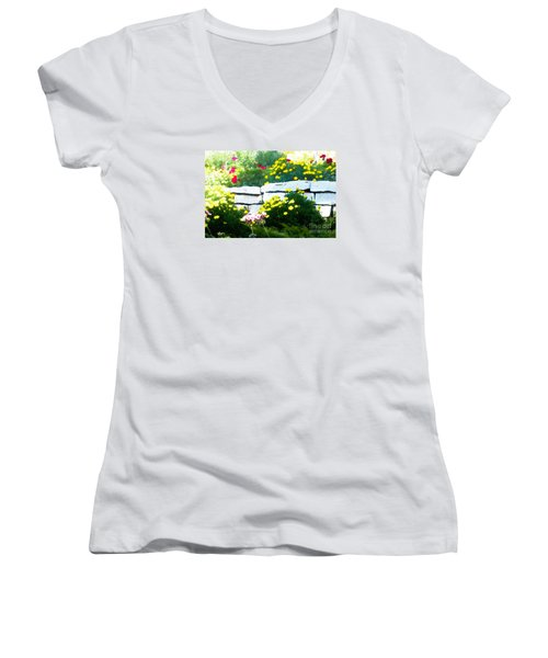 The Garden Wall Women's V-Neck T-Shirt (Junior Cut) by David Blank