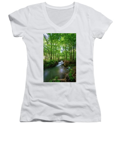 The Green Forest Women's V-Neck