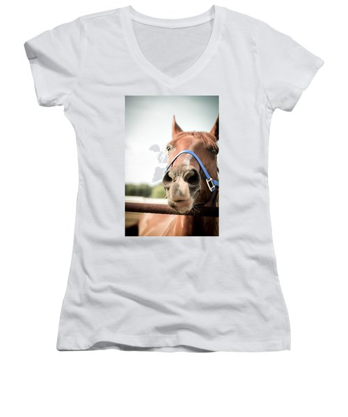 The Horse's Mouth Women's V-Neck