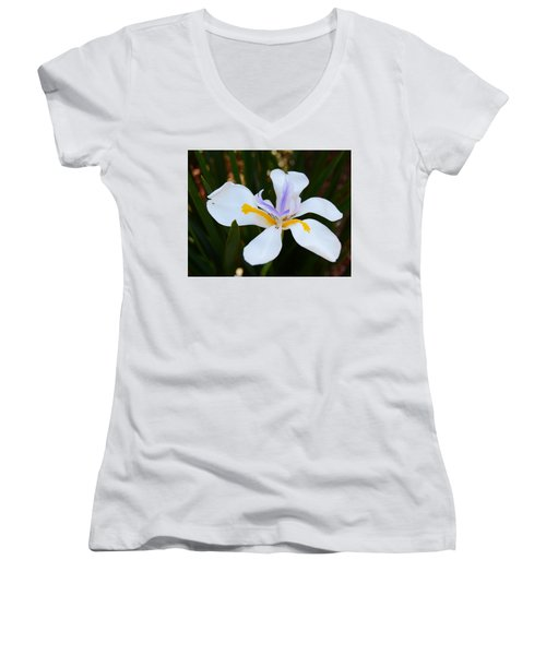 The Legacy African Iris Women's V-Neck T-Shirt