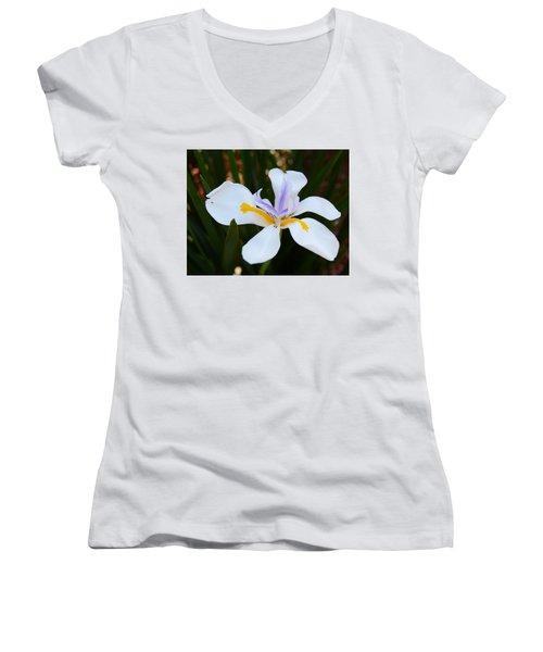 The Legacy African Iris Women's V-Neck T-Shirt