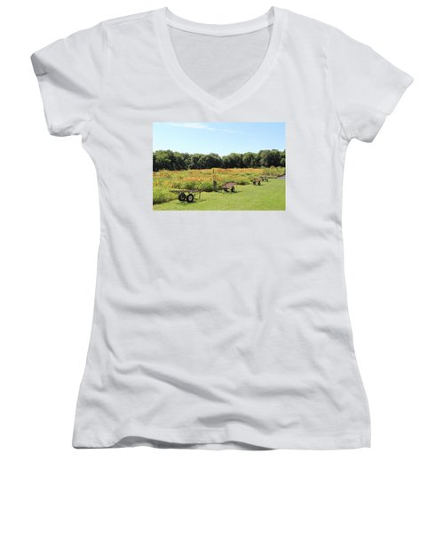 The Lilies Of The Fields Women's V-Neck T-Shirt