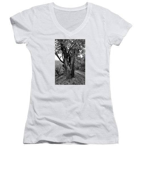 The Maltreated One Women's V-Neck T-Shirt (Junior Cut) by Goyo Ambrosio
