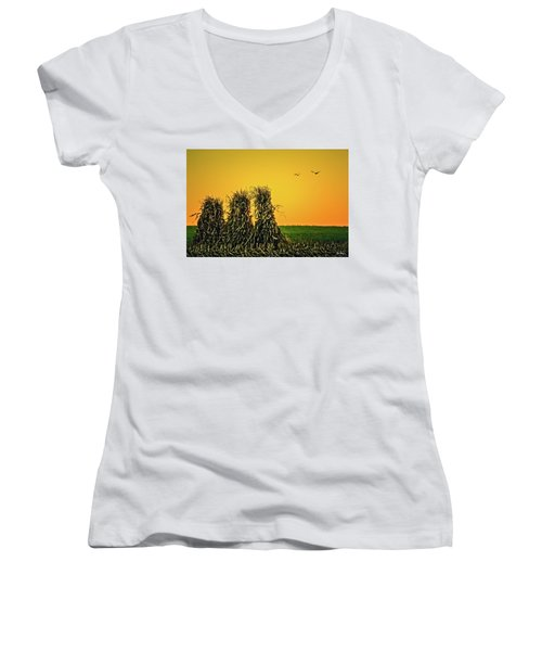 The Migration Of Summer Women's V-Neck (Athletic Fit)