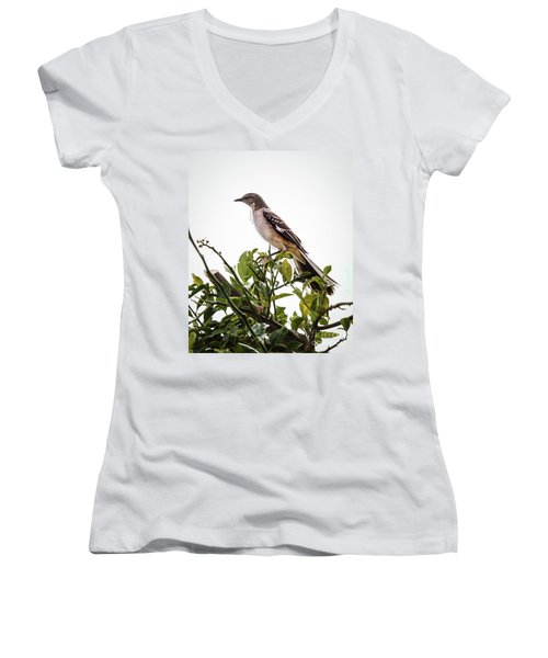 The Northern Mockingbird Women's V-Neck (Athletic Fit)