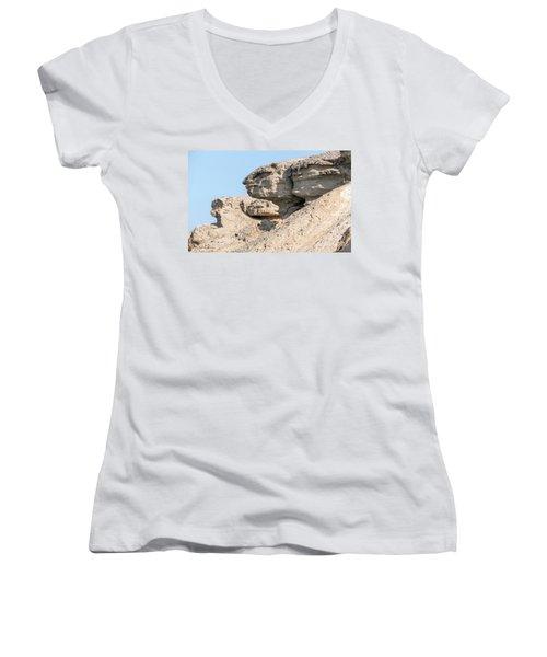 Women's V-Neck T-Shirt (Junior Cut) featuring the photograph The Old Gatekeeper 02 by Arik Baltinester