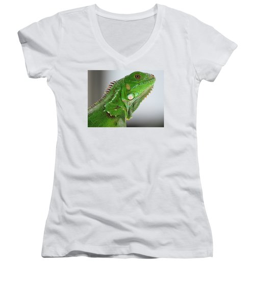 The Omnivorous Lizard Women's V-Neck (Athletic Fit)