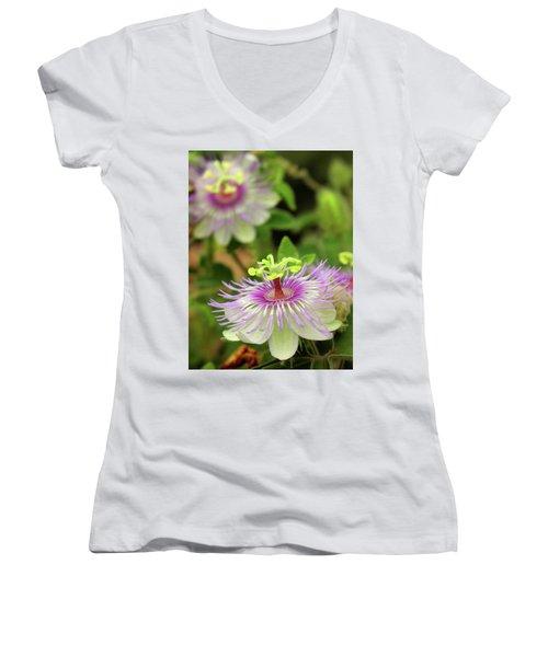 The Passion Women's V-Neck T-Shirt