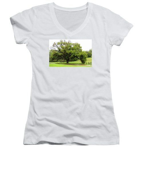 The Perfect Tree					 Women's V-Neck T-Shirt