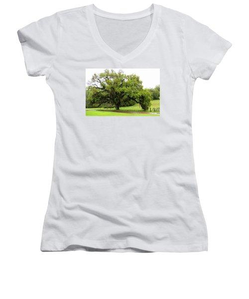 The Perfect Tree Women's V-Neck T-Shirt