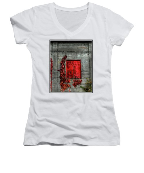 The Red Loft Women's V-Neck (Athletic Fit)