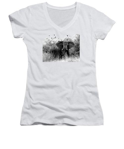 The Standoff Women's V-Neck T-Shirt