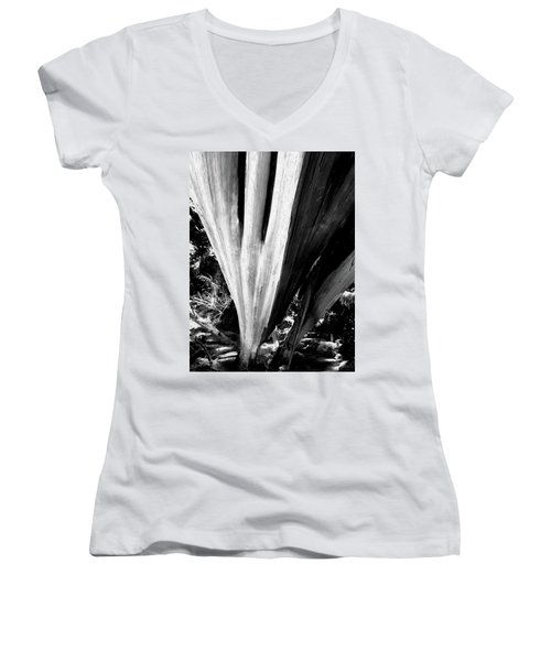 Women's V-Neck featuring the photograph The Swoop Of Fallen Wood by Lorraine Devon Wilke
