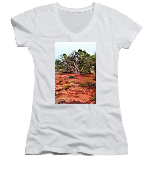 The Tree That Knows All Women's V-Neck