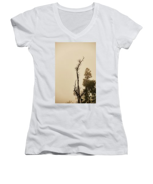 The Trees Against The Mist Women's V-Neck T-Shirt (Junior Cut) by Rajiv Chopra