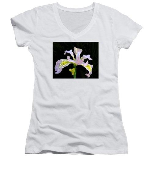 The Wild Iris Women's V-Neck T-Shirt