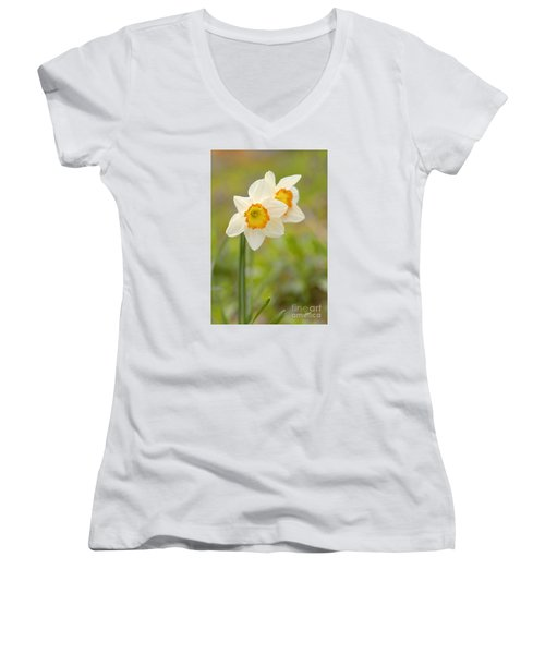 Thinking About Spring Women's V-Neck T-Shirt (Junior Cut) by Alana Ranney