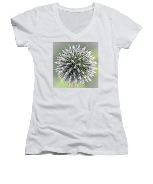 Thistle II Women's V-Neck (Athletic Fit)