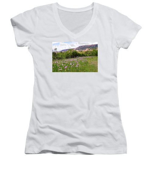 Thistles In The Canyon Women's V-Neck