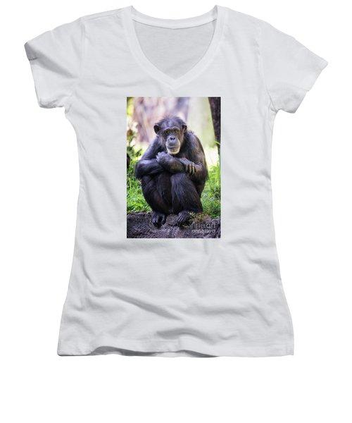 Thoughtful Chimpanzee  Women's V-Neck T-Shirt