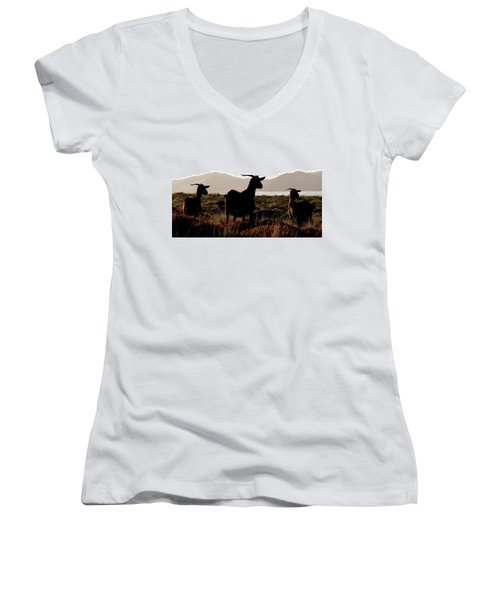 Women's V-Neck T-Shirt (Junior Cut) featuring the photograph Three Goats by Pedro Cardona