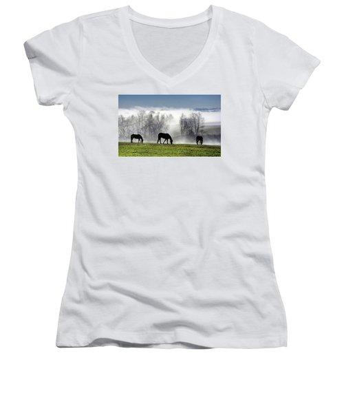 Three Horse Morning Women's V-Neck (Athletic Fit)