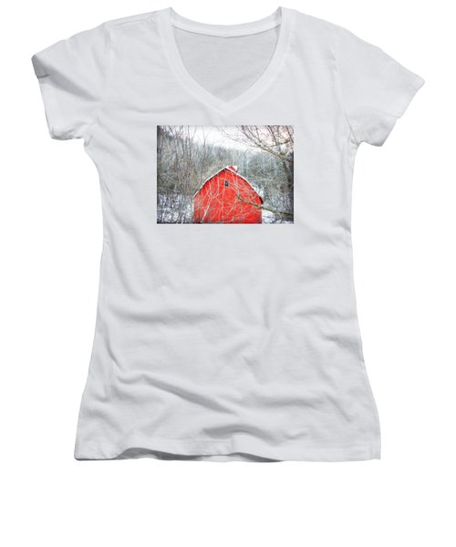 Women's V-Neck T-Shirt (Junior Cut) featuring the photograph Through The Woods by Julie Hamilton
