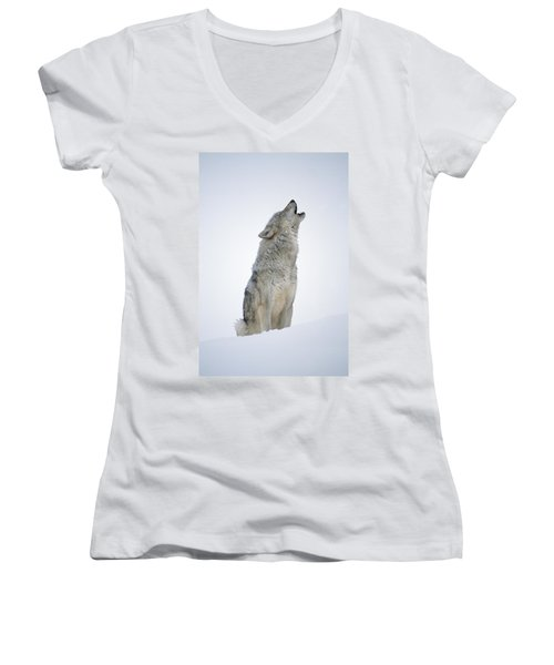 Timber Wolf Portrait Howling In Snow Women's V-Neck
