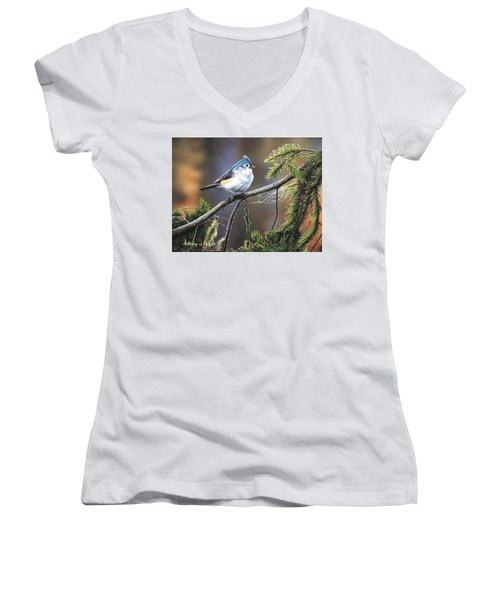 Titmouse Women's V-Neck