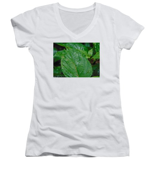 Trail Vibes Women's V-Neck