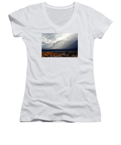 Tread Lightly Women's V-Neck T-Shirt (Junior Cut) by John Glass