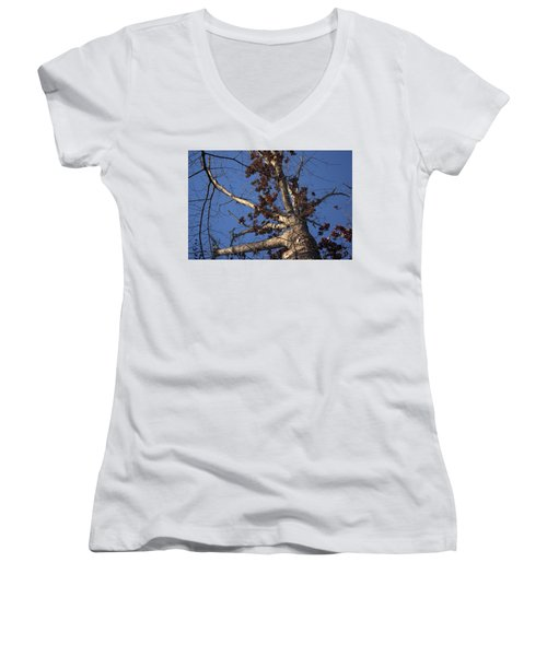 Tree And Branch Women's V-Neck