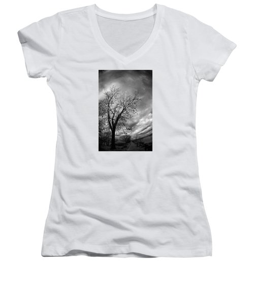 Tree 4 Women's V-Neck (Athletic Fit)