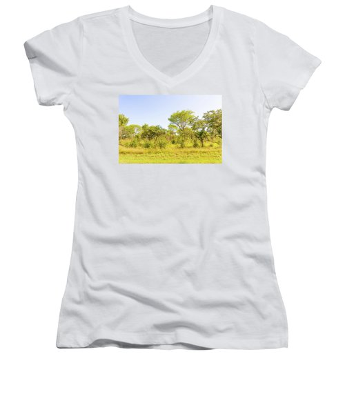 Trees In Zambia Women's V-Neck (Athletic Fit)
