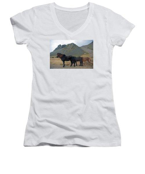 Women's V-Neck T-Shirt featuring the photograph Tri - Color Icelandic Horses by Dubi Roman