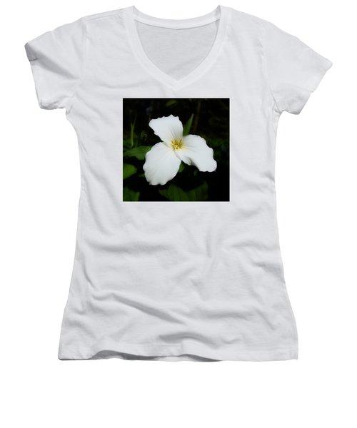 Trillium Women's V-Neck T-Shirt (Junior Cut) by David Blank