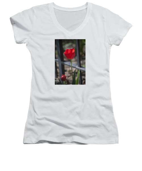 Tulip And Garden Fence Women's V-Neck (Athletic Fit)