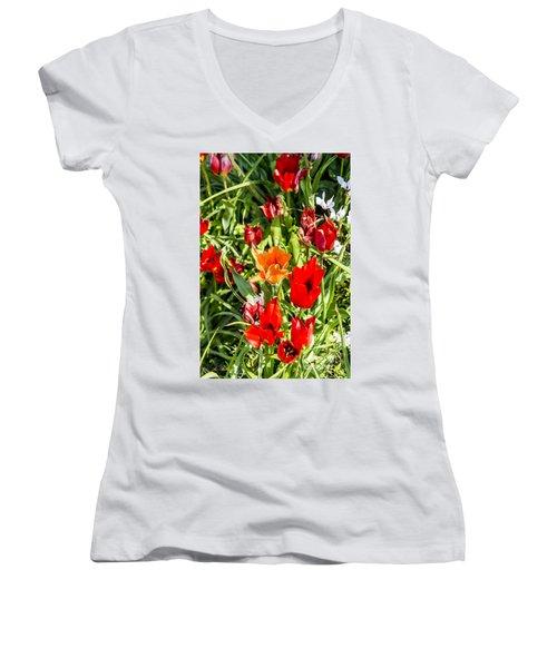 Tulip - The Orange One 03 Women's V-Neck