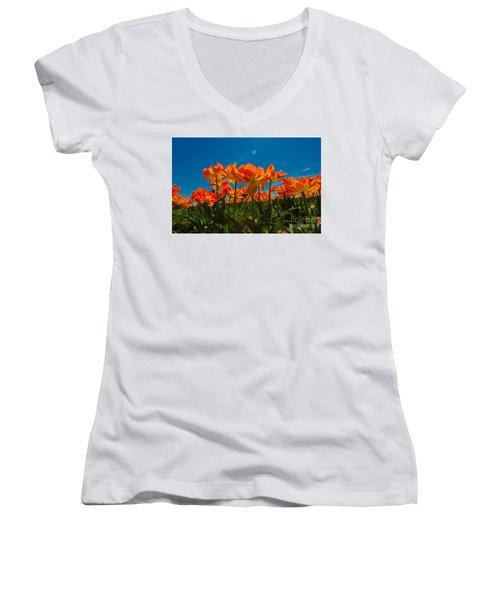 Tulips In The Sun Women's V-Neck T-Shirt (Junior Cut) by John Roberts