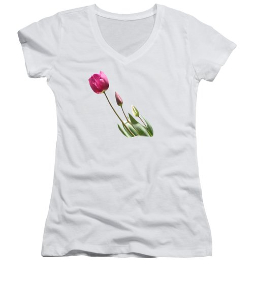 Tulips On Transparent Background Women's V-Neck T-Shirt