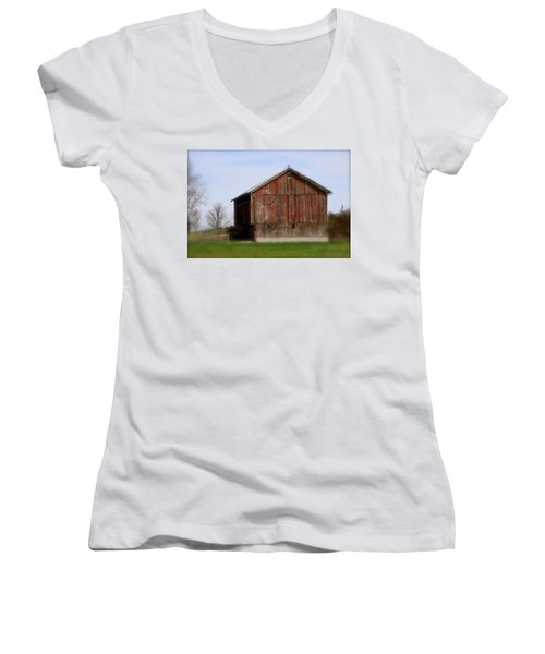 Turkey Vultures Hovering Around The Barn Women's V-Neck