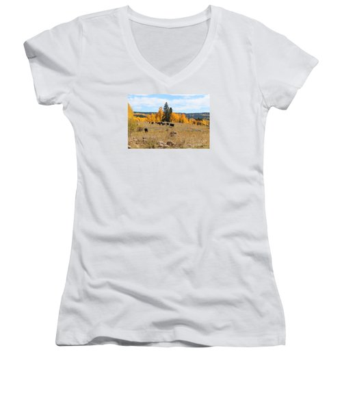 Twilight Fall Mountain Range In Colorado Women's V-Neck (Athletic Fit)