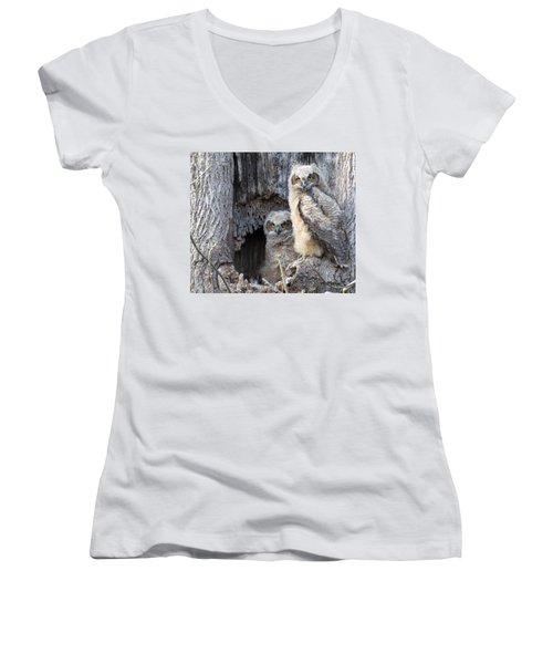 Twin Owls Women's V-Neck T-Shirt